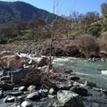 Thomes Creek just upstream of the Gorge.- Thomes Gorge