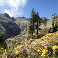 Gibson Peak visible from the trail. - Granite Lake + Seven Up Pass