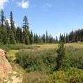 Gibson Meadow just below Granite Lake. - Granite Lake + Seven Up Pass