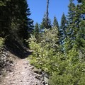 The trail up Black Butte near the trailhead.- Black Butte