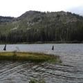 Grass around Grass Lake.- Rock Lake + Jamison Lake