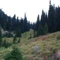 Ascending the Minam River Valley.- North Catherine Creek Trail + Cartwheel Ridge Loop