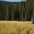 Approaching North Catherine Meadow.- North Catherine Creek Trail + Cartwheel Ridge Loop