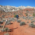Posts mark the way into the canyon.- Lower Muley Twist Loop