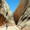 Hiking through the narrowest part of the canyon feels like being in a maze.- Lower Muley Twist Loop