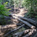 A makeshift bridge of fallen logs crosses the creek as you near the waterfall.- Hunter Creek