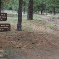 Signs are easy to follow.- Fatman's Loop Trail