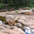 Spring rains have filled pools in the sandstone.- Kelly Canyon