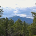 Mount Elden as seen from Campbell Mesa Loop.- Campbell Mesa Trails