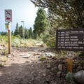 Galena Creek Recreation Area has a number of trails, and most are accessible from the Jones Whites Creek Loop Trail.- Jones Whites Creek Loop