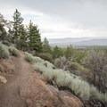 Views over South Reno.- Jones Whites Creek Loop