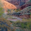 Canyon floor below Cliff Arch.- Coyote Gulch