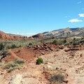 The vast landscape of Capitol Reef.- Lower Muley Twist Loop