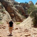 The trail is exposed to the heat of the sun for most of its length.- Capitol Gorge to the Tanks