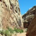 Slanted canyon walls.- Capitol Gorge to the Tanks
