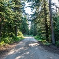Campground roads are narrow and rough.- Spruce Grove Campground