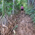 A section of the muddy trail.- Kalalau Trail