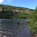 Searching for crawfish in Laurance Lake.- Kinnikinnick Campground