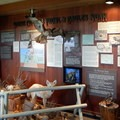 The museum is dense with information and displays.- Bruneau Dunes State Park