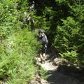 Hiking into Goat Mountain Trail.- Goat Mountain + Green River Loop