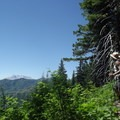 View of Mount Saint Helens from Goat Mountain Trail.- Goat Mountain + Green River Loop