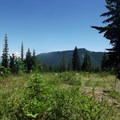 Goat Mountain Trail with Mount Rainier in the background.- Goat Mountain + Green River Loop