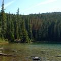 Vivian Lake.- Vivian Lake