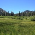 Deadfall Meadows.- Deadfall Lakes + Mount Eddy