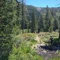 Hikers crossing Deadfall Creek. - Deadfall Lakes + Mount Eddy