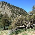 Middle Deadfall Lake.- Deadfall Lakes + Mount Eddy