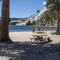 The beach at Tenaya Lake's east end.- Yosemite National Park
