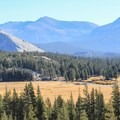 Lembert Dome, Tuolumne Meadows.- Yosemite National Park