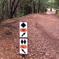 The trails in Tolkan Terrain park are well marked for rider ability.- Paradise Royale Mountain Bike Trail