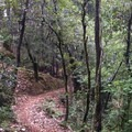 - Paradise Royale Mountain Bike Trail