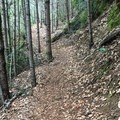 Paradise Royale Mountain Bike Trail.- Paradise Royale Mountain Bike Trail