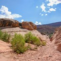 After the first narrows, Fry Canyon broadens and heats up in the sun.- Fry Canyon