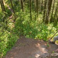 The trail from the summit follows the ridge and continues with steep ups and downs.- Elk Mountain Loop via Elk Creek Trail