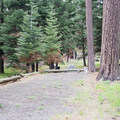campsite #9- Ochoco Divide Campground