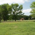 The campground is set in beautiful meadows.- Crow Valley Campground