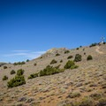 Ophir Peak, crowned with a microwave tower, amidst the sage and the occasional juniper along the path.- Ophir Peak / Mount Davidson