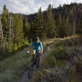 Catching the afternoon sunshine on the South Fork of Warm Springs Trail.- South Fork of Warm Springs to Red Warrior