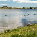 Many geese call the lake home.- Granite Springs Reservoir Campgrounds