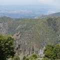 The view from Boucher Hill Lookout.- Palomar Mountain State Park
