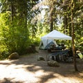 Typical campsite at Shannon Creek Campground.- Baker Lake, Shannon Creek Campground
