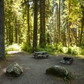 Large campsite at Park Creek Campground.- Park Creek Campground