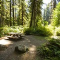 Typical campsite at Park Creek Campground.- Park Creek Campground