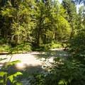 Park Creek at campsite.- Park Creek Campsite