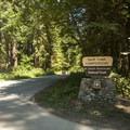 Swift Creek Campground.- Baker Lake, Swift Creek Campground