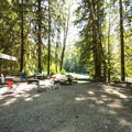Large group site at Swift Creek Campground.- Baker Lake, Swift Creek Campground