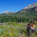 Photography in a meadow below Mount Peale.- La Sal Pass